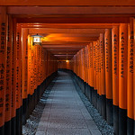 Vermillion Gates - Kyoto, Japan
