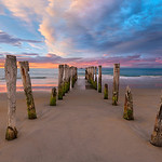 Colors and shapes blend beautifully with the morning sunrise on St Clair Beach in New Zealand.
