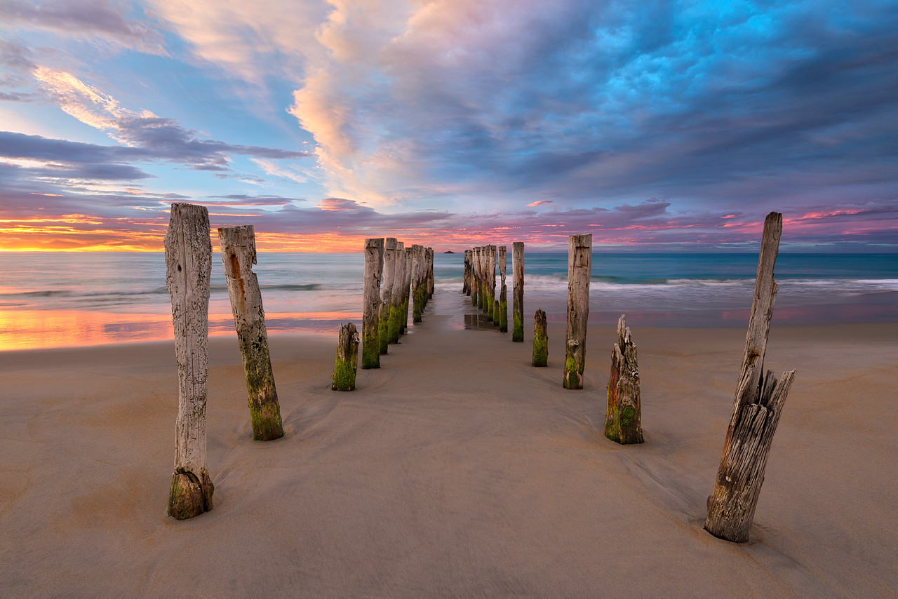 Soft Surrender - St Clair Beach - New Zealand